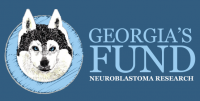 More about Georgia's Fund